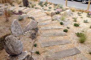 Coastal Garden Penzance