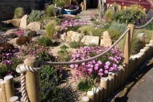 Coastal Garden Newquay