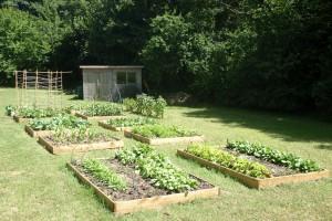 Vegetable & Kitchen Gardens Falmouth