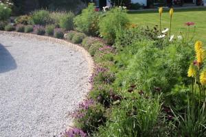 Planting Redruth