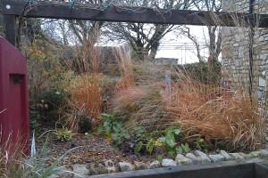 Planting Falmouth