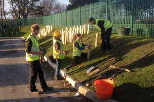 Landscape design and tree planting, Redruth, Cornwall St Agnes
